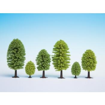 Lehtpuud 10 tk, 3.5 - 5 cm