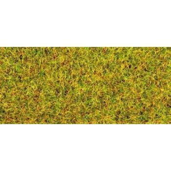 Scatter Grass Summer Meadow 100g