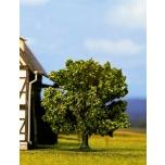 Viljapuu 7,5cm