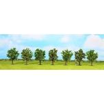 Viljapuud rohelised 7 tk. ~9cm Noch