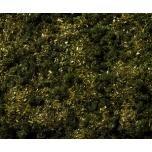 Noch Lehestik oliiviroheline