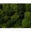 Samblik roheline 35g